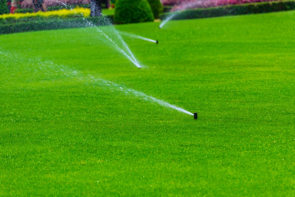 custom designed sprinkler system